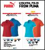 Puma flyer